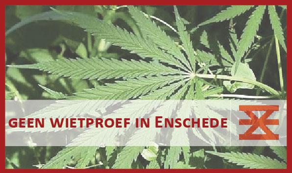 Geen wietproef in Enschede